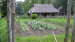 Garden at Pulga Farm