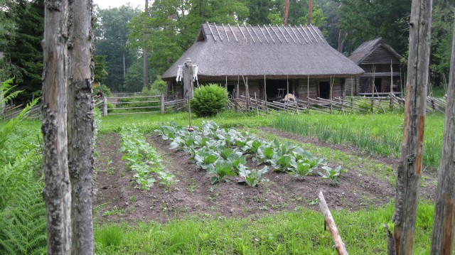 Garden at Pulga Farm