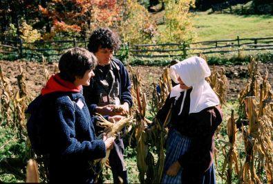 Corn talk (2)